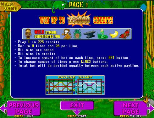 Правила гри на автоматі Crazy Monkey